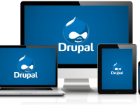 The Features that Make the Latest Drupal Versions Best Suited for Website Designing