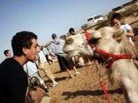 Kinds of Activities for Teens Traveling to Israel