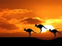 Great Natural Wonders to Explore in Australia
