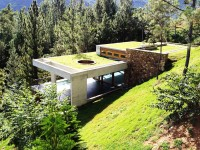 What Are Green Roofs and Why Deciding to Choose One?