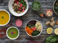 Characteristics of Great Meal Delivery Diets