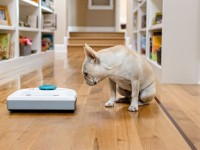How Robotic Vacuums Work and why You Should Consider a Robotic Vacuum Cleaner