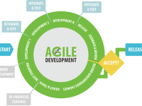 Realizing Agile Software Development Success