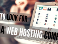 5 Main Things to Consider While Choosing a Web Hosting Company