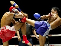 SuWit Muay Thai Campus: Training and Weight Loss in Thailand