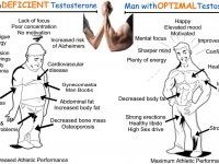 Levels of testosterone as per age – Why this hormone is essential in our body