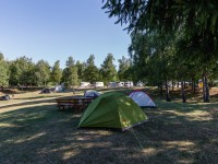 Best Camping Activities and Ideas
