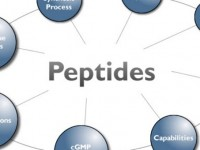 What are the Health Benefits of Peptides?