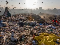 The effects of solid waste to the business environment