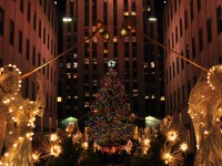 Stylish and Cost-Effective Christmas Decorations Ideas