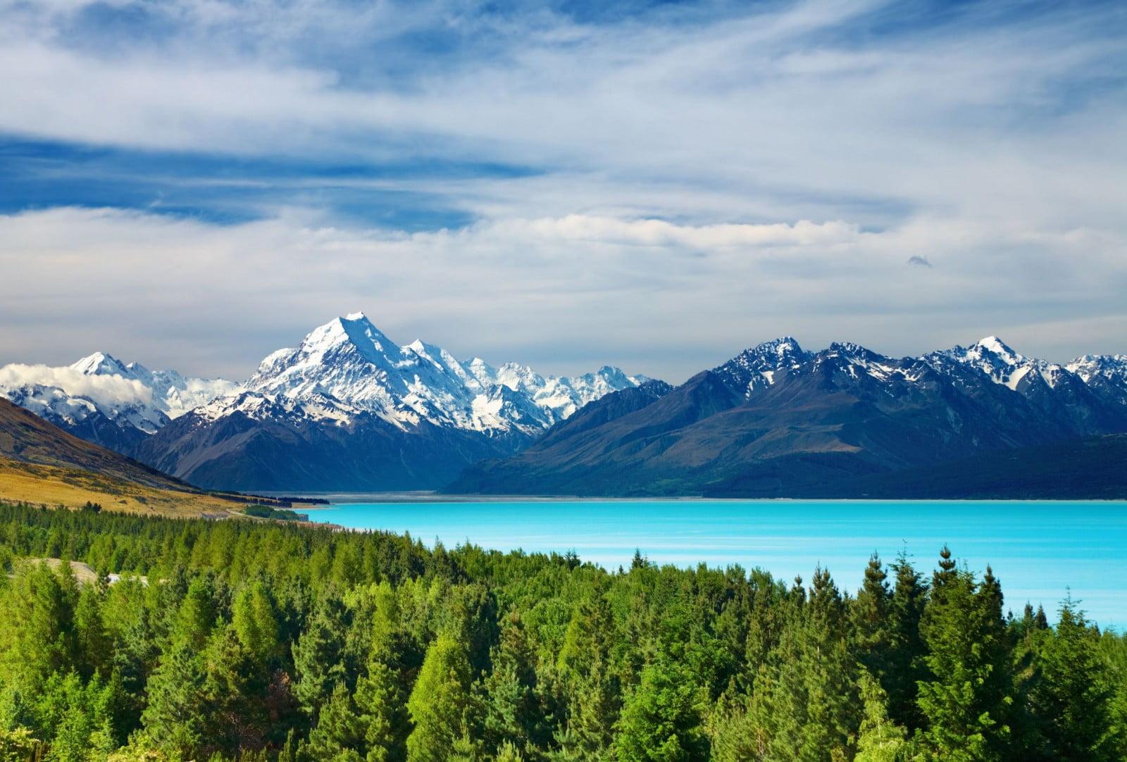 New Zealand3