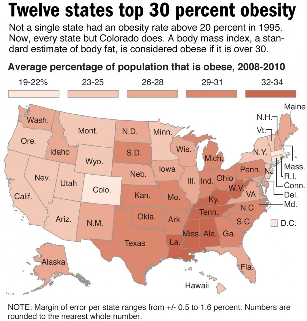 obesity in america essays