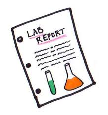 How to Craft a Chemistry Lab Report in 8 Easy Steps