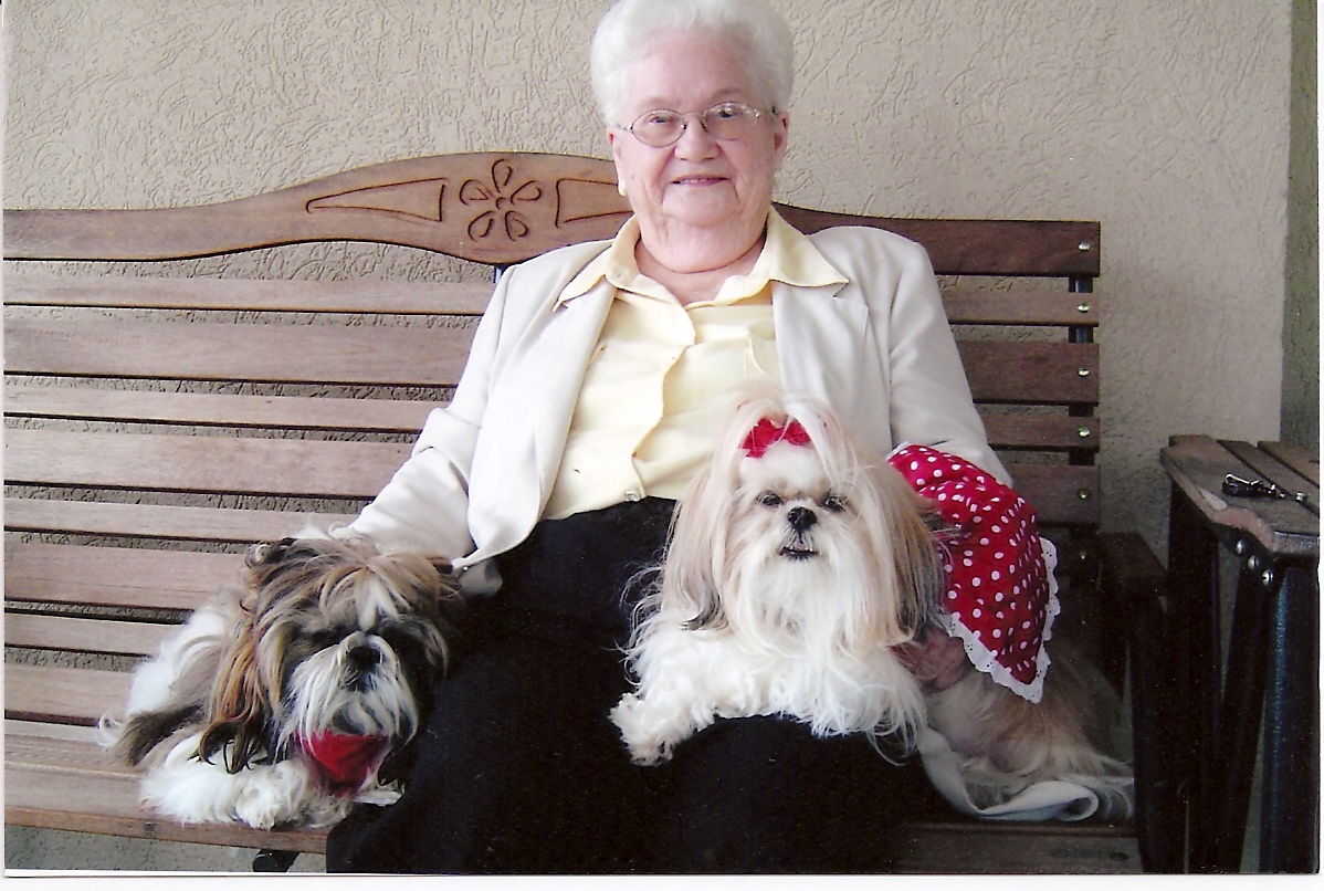Which Dogs Is A Good Companion For Seniors
